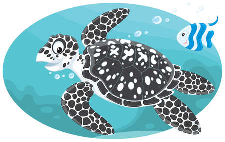 subaqueous: Marine turtle and coral fish Illustration