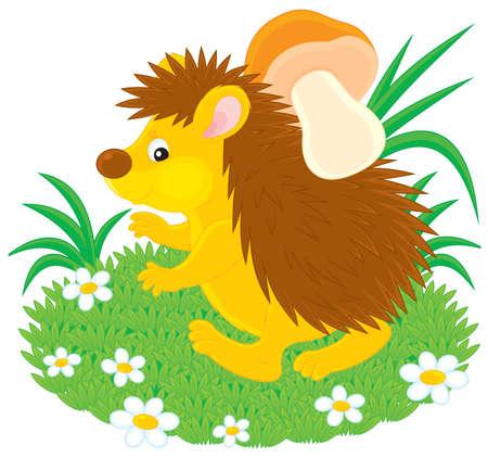 Hedgehog with a mushroom Vector