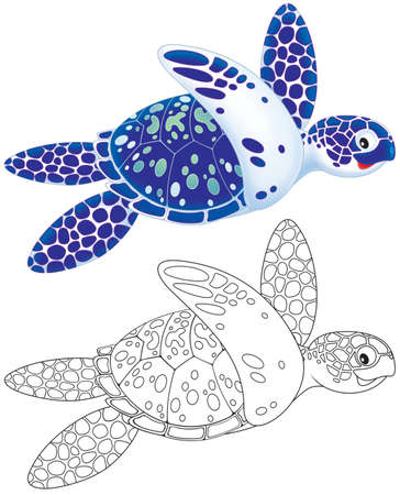 sea turtle: Marine turtle