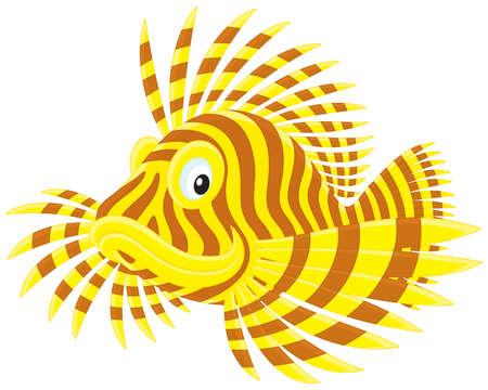 scorpion fish: Scorpion fish Illustration
