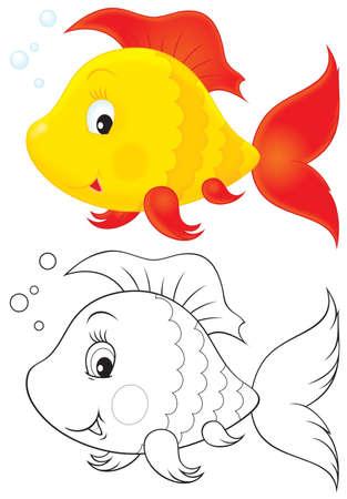 aquarian fish: Toy fish