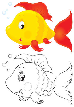 fish toy: Toy pesce