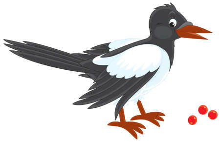 cartooning: Magpie Illustration