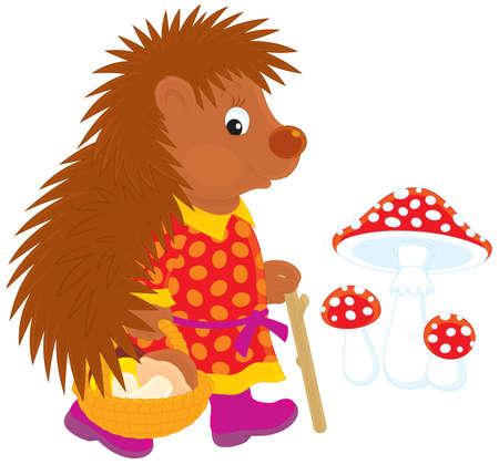 folk tales: Hedgehog mushroomer