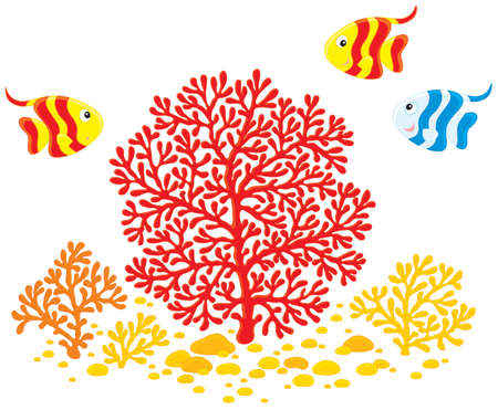 Corals and fishes Stock Vector - 13056913