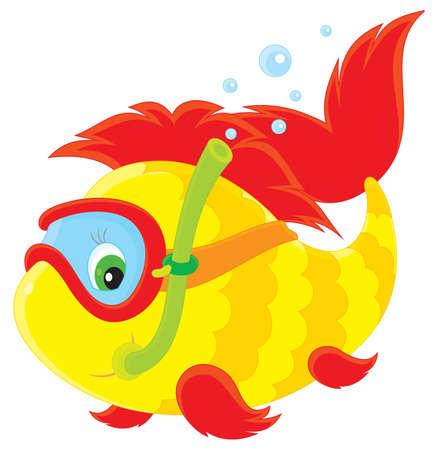 snorkel: Vis duiker zwemmen met een duikbril en snorkel
