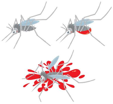 mosquito sucking blood and crushed Ilustração