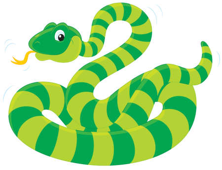 green striped snake Stock Vector - 13763858