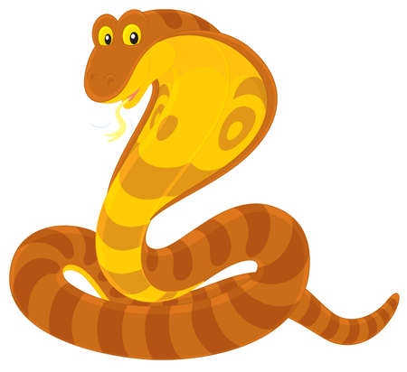 cartooning: Cobra Illustration