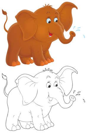 baby elephant: Elephant Stock Photo
