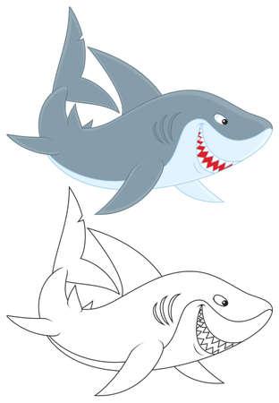 squalo bianco: grande squalo bianco