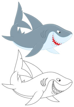carcharodon: great white shark Illustration
