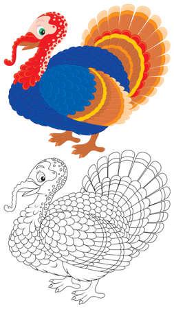 granja avicola: Turquía Vectores