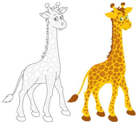 outlined isolated: Giraffe