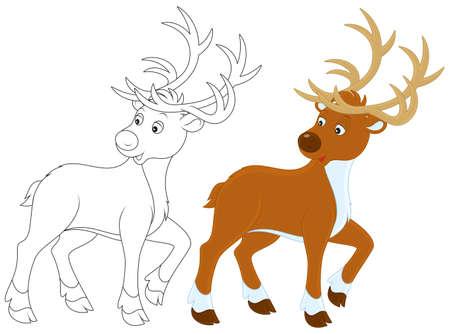 animals outline: Reindeer