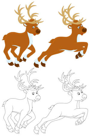 Reindeer Stock Vector - 16758550
