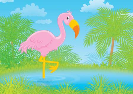 pink flamingo: Pink flamingo