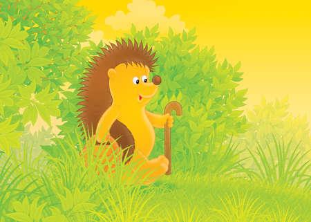 cartoon hedgehog: Hedgehog mushroomer