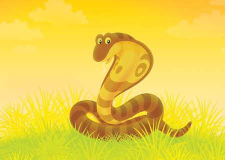 Big brown cobra writhing in grass Stock Photo