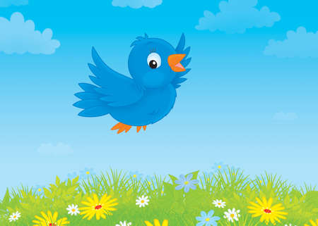 bluebird: blue bird flying over a meadow with wildflowers Stock Photo