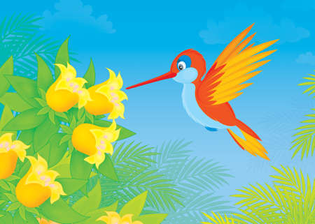 humming-bird flying over tropical flowers in jungle photo
