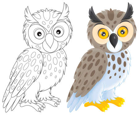 Owl Stock Photo - 17191228