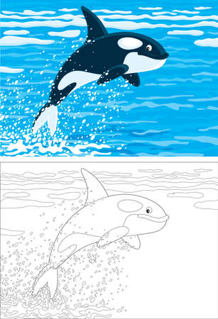 orca leaping out of the water in a polar sea Vector