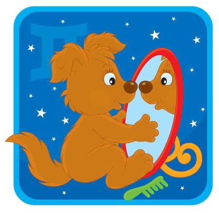 welpe: Sternzeichen der Zwillinge als Welpe in einem Spiegel