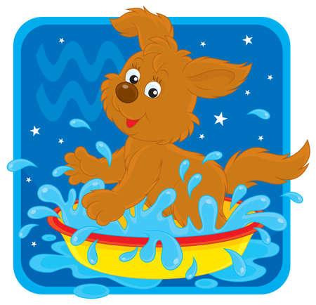welpe: Sternzeichen des Wassermanns als Spritzwasser pup Illustration