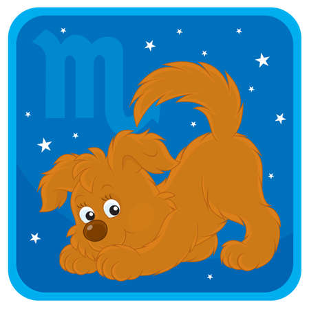 Zodiac sign of Scorpio as a pup in pose of scorpion Vector