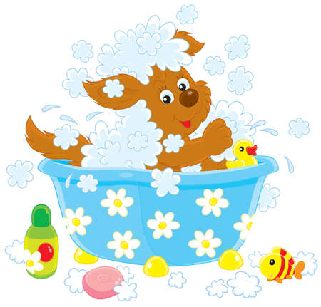 Funny brown pup washing in a small bath