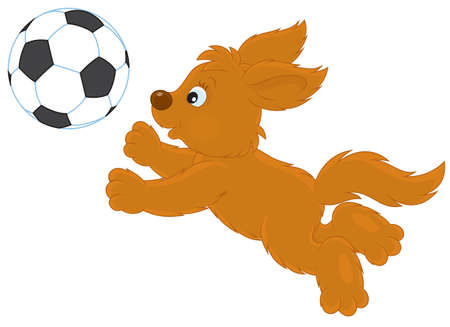 puppy playing football Stock Vector - 17466023