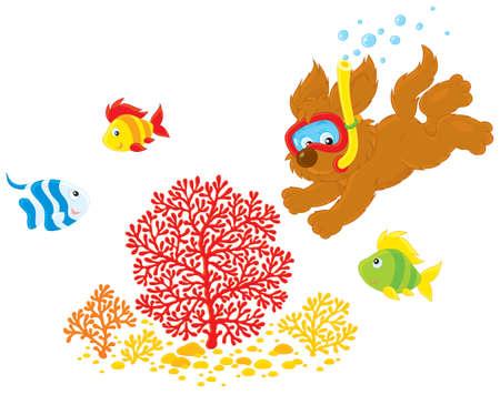 welpe: Welpe mit einer Maske und Schnorchel Tauchg�nge f�r Korallen