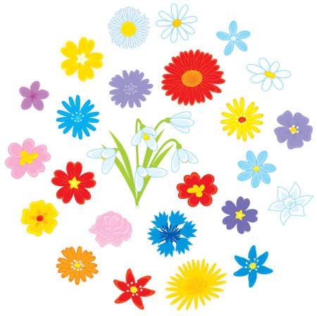 Flowers Stock Vector - 17602382