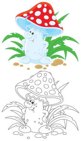 agaric: Fly agaric Illustration
