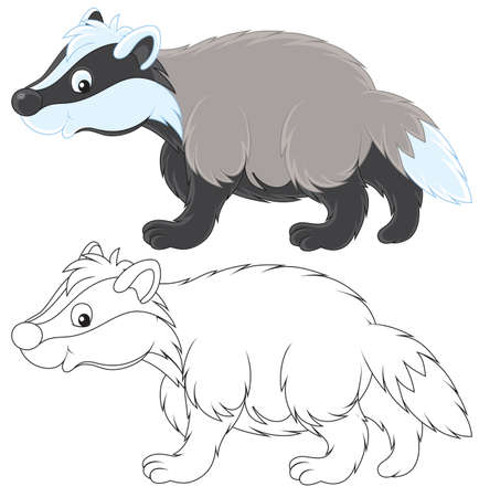 cartooning: Badger Illustration