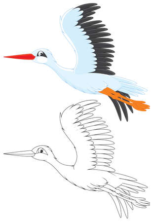 cartooning: White stork flying
