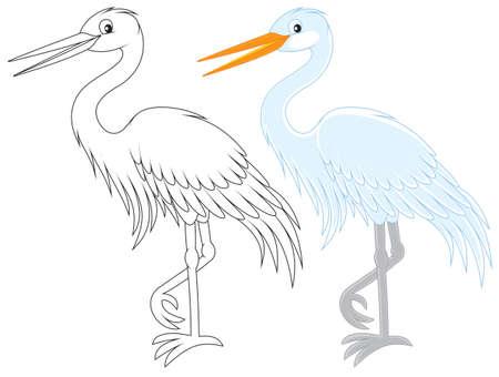 wading: Egret Illustration