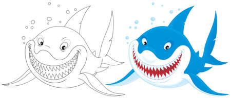 tommy: Great white shark Stock Photo