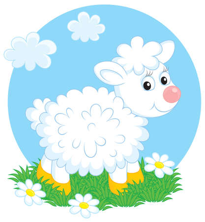 grazing: Lamb