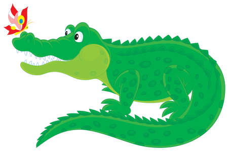 Big green alligator with a small colorful butterfly Vector