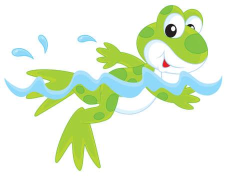 green frogling swimming in water