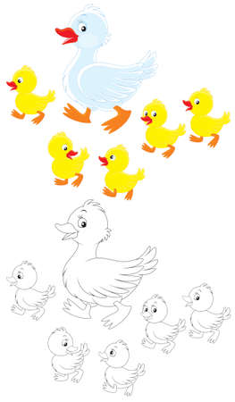 Duck and ducklings Stock Vector - 19198344