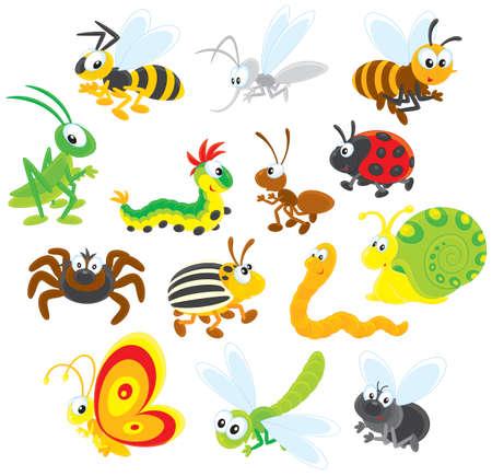 Insectos Ilustración de vector