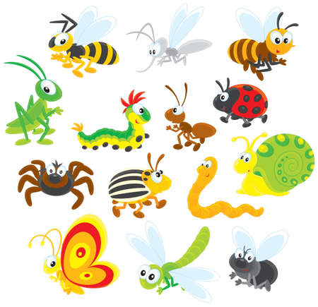 Insects Stock Vector - 19837395