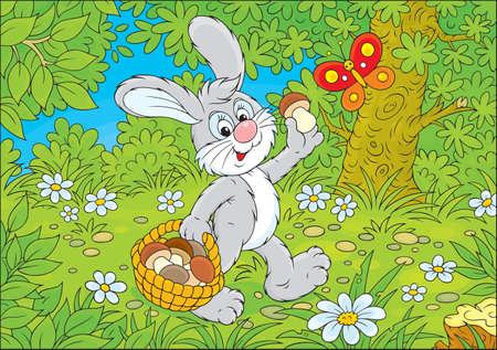 cottontail: Bunny mushroomer Illustration