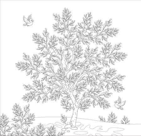 bullfinches on a snow-covered tree Illustration