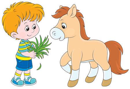 Kleiner Junge füttert ein Pony mit Gras