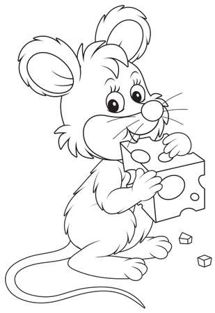 Little mouse gnawing a piece of cheese