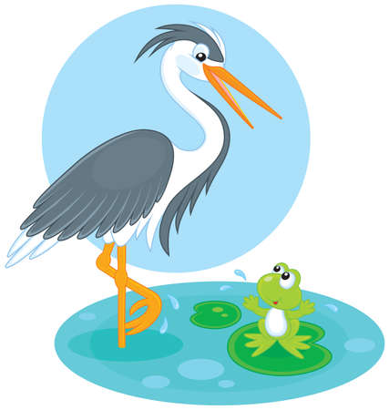 Heron and frog Stock Vector - 29465197